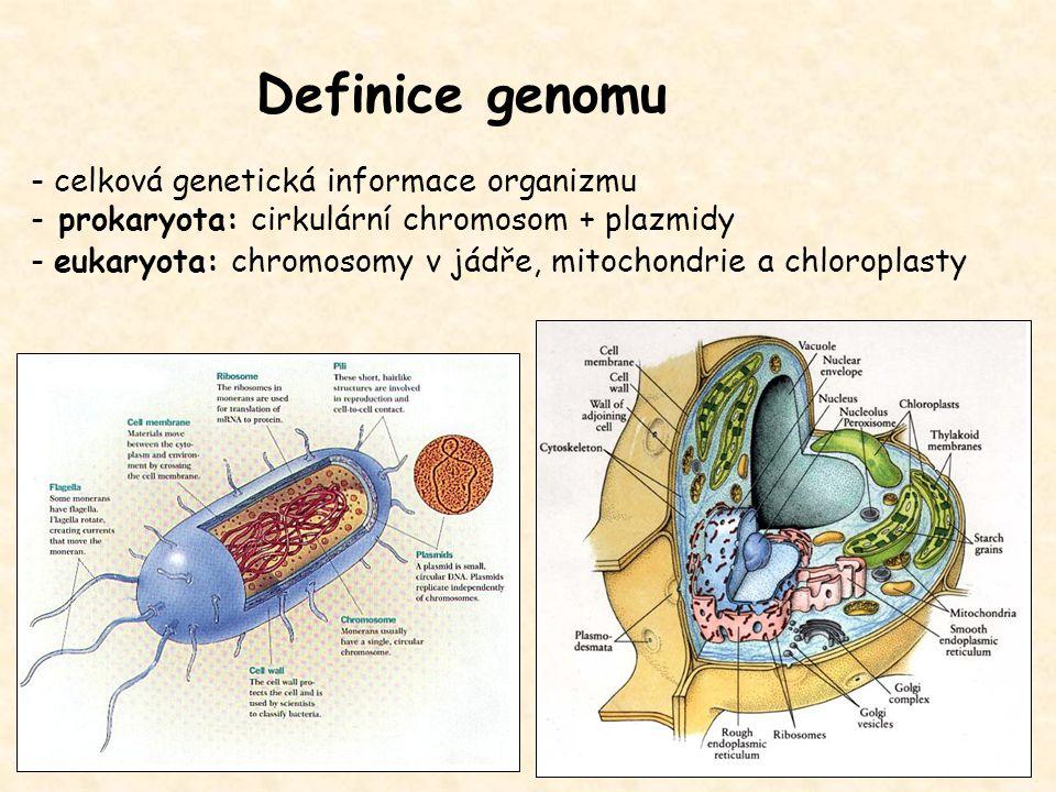 Definice genomu - celková genetická informace organizmu