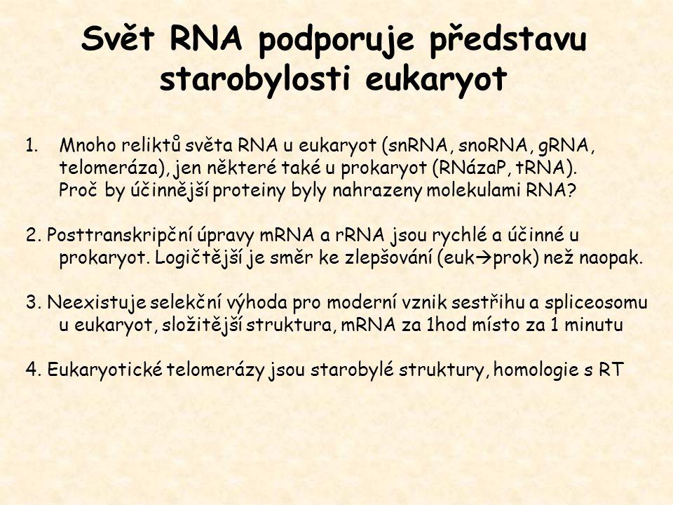 Svět RNA podporuje představu starobylosti eukaryot