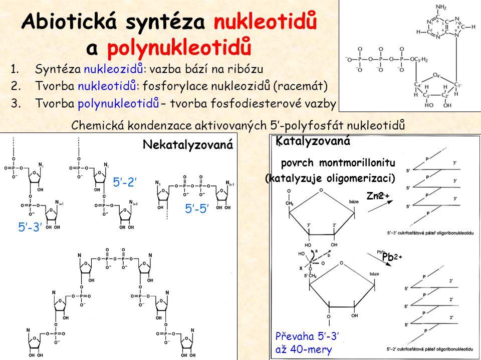 Abiotická syntéza nukleotidů a polynukleotidů