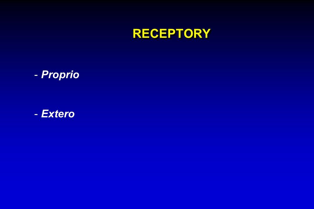 RECEPTORY Proprio Extero