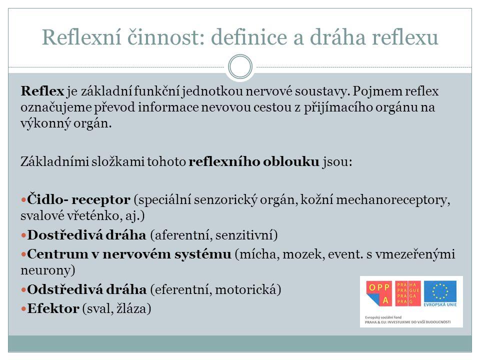 Reflexní činnost: definice a dráha reflexu
