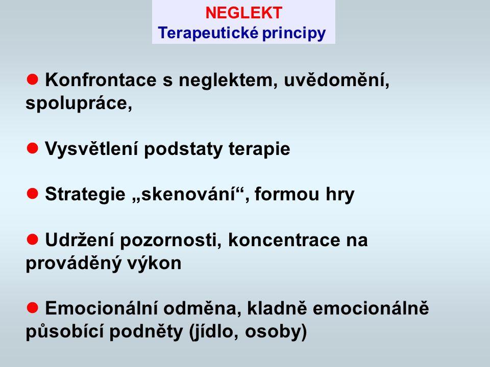 Terapeutické principy