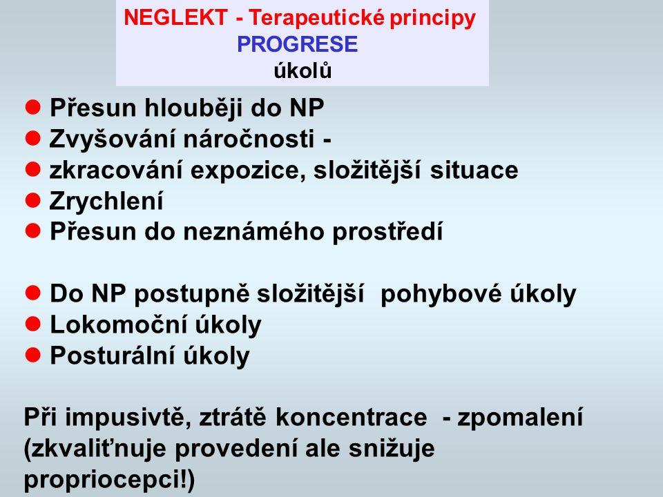 NEGLEKT - Terapeutické principy