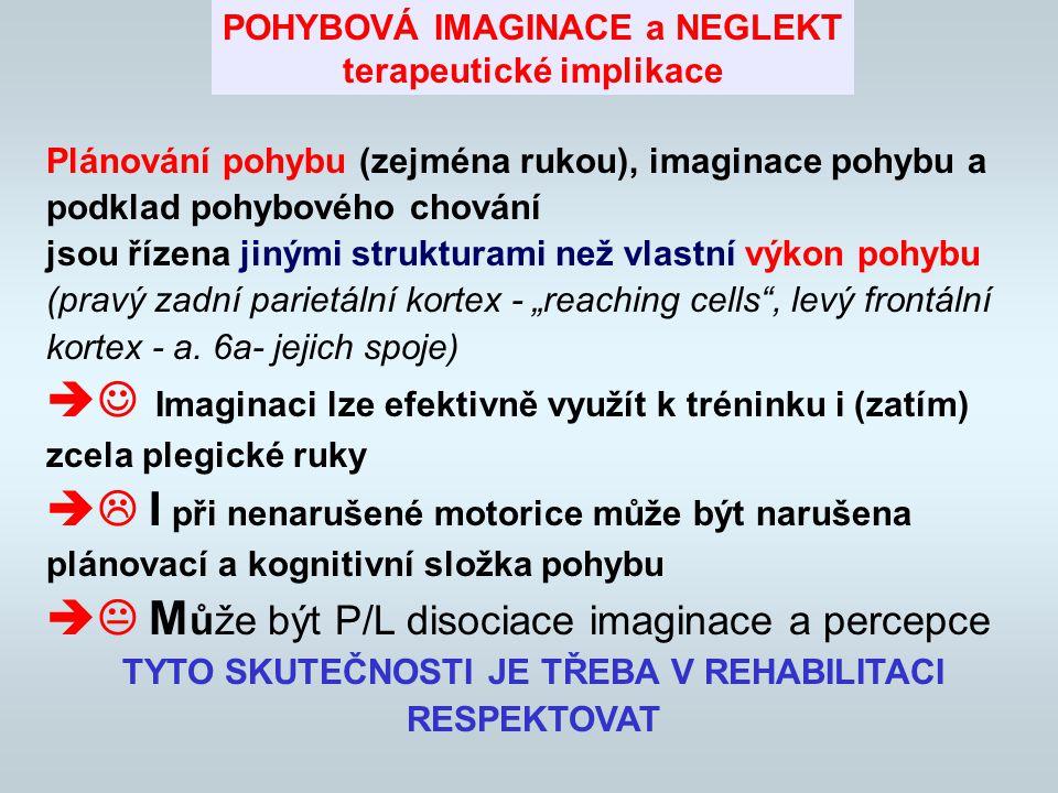 Může být P/L disociace imaginace a percepce