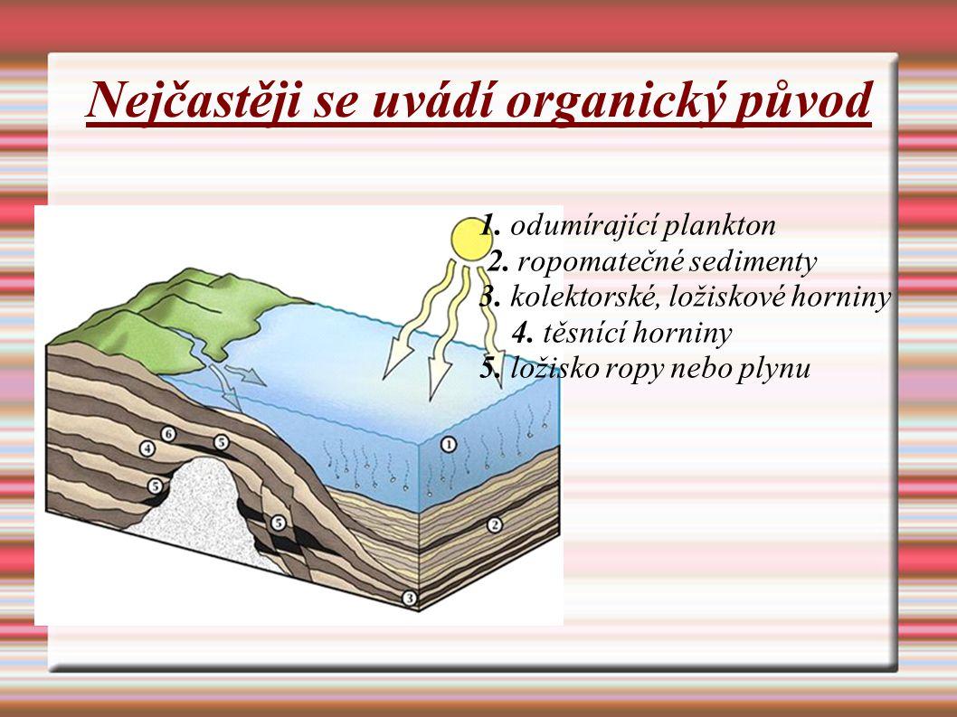 Nejčastěji se uvádí organický původ