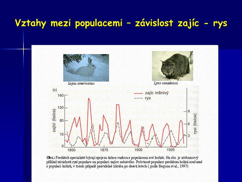 Vztahy mezi populacemi – závislost zajíc - rys