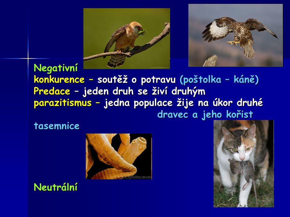 Negativní konkurence – soutěž o potravu (poštolka – káně) Predace – jeden druh se živí druhým. parazitismus – jedna populace žije na úkor druhé.