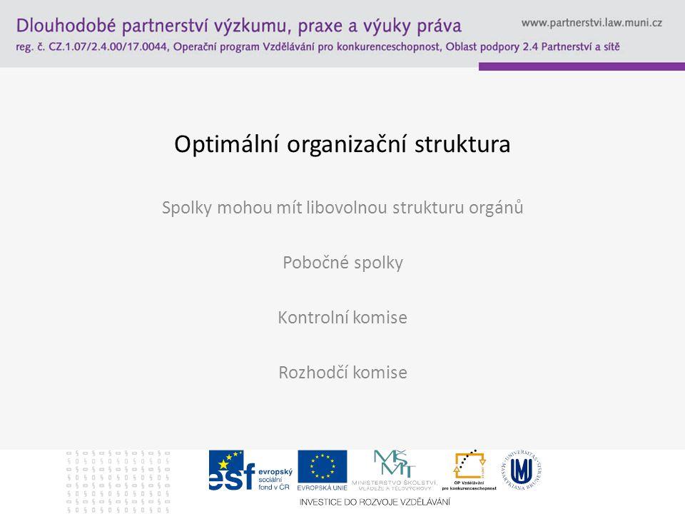 Optimální organizační struktura