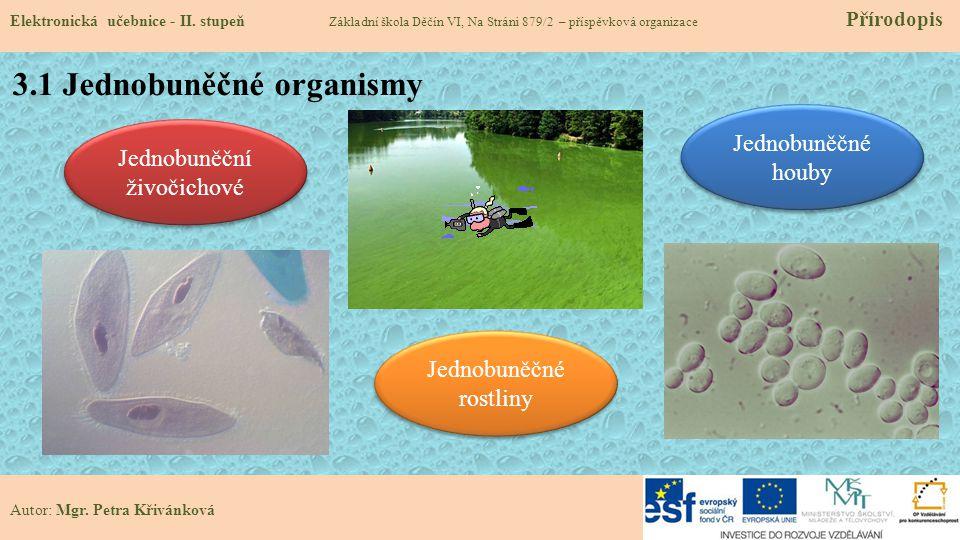 3.1 Jednobuněčné organismy