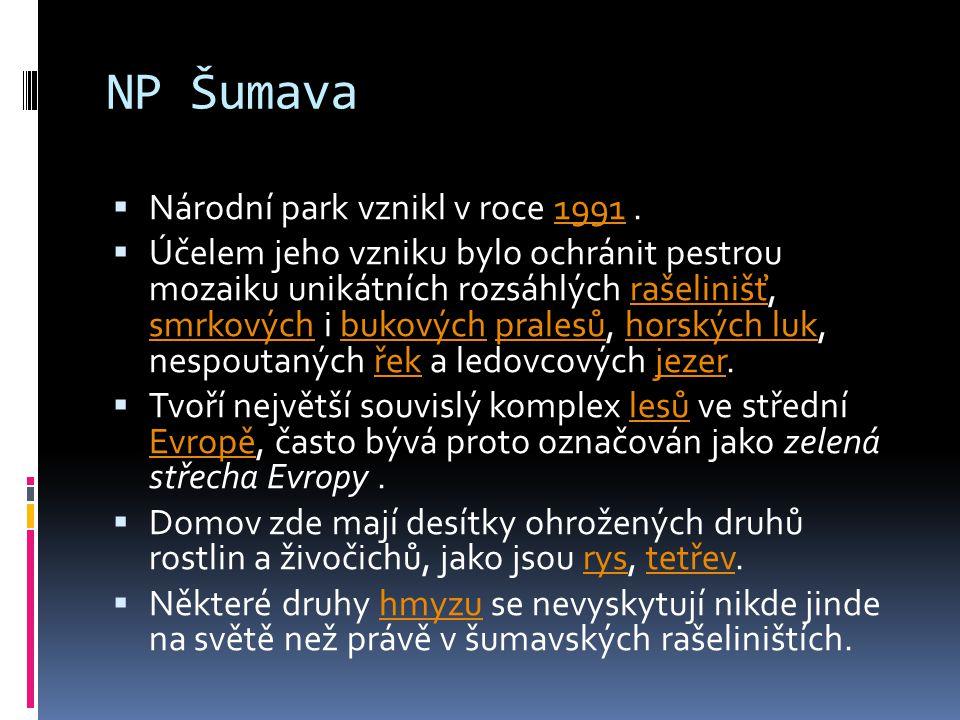 NP Šumava Národní park vznikl v roce 1991 .