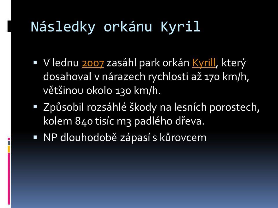 Následky orkánu Kyril V lednu 2007 zasáhl park orkán Kyrill, který dosahoval v nárazech rychlosti až 170 km/h, většinou okolo 130 km/h.