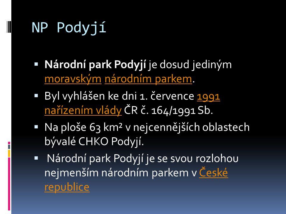 NP Podyjí Národní park Podyjí je dosud jediným moravským národním parkem. Byl vyhlášen ke dni 1. července 1991 nařízením vlády ČR č. 164/1991 Sb.