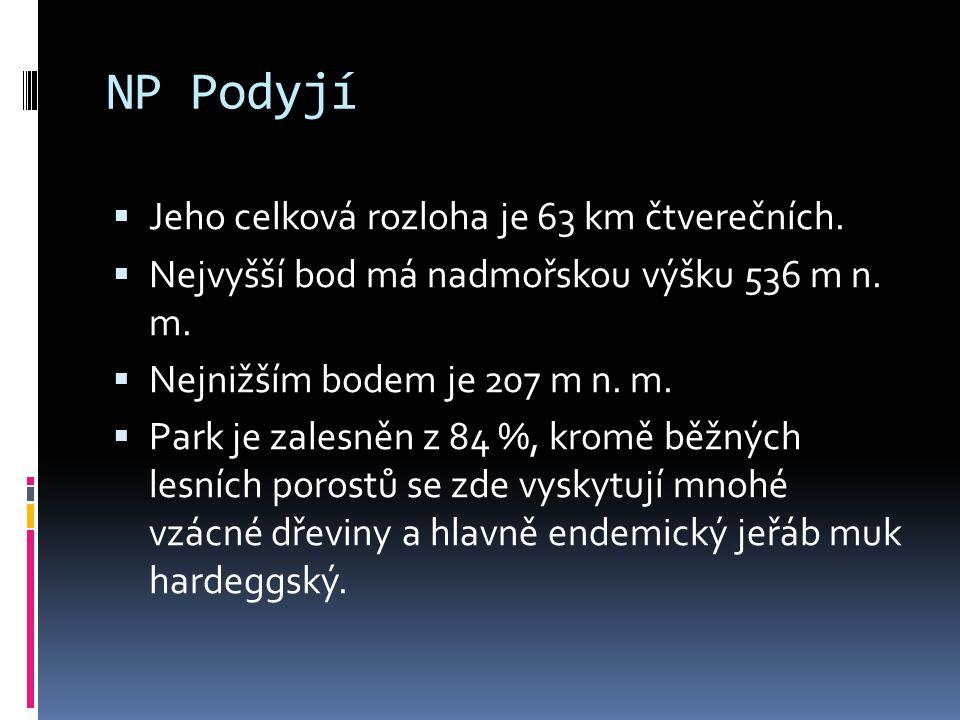 NP Podyjí Jeho celková rozloha je 63 km čtverečních.