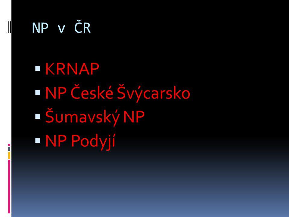 NP v ČR KRNAP NP České Švýcarsko Šumavský NP NP Podyjí