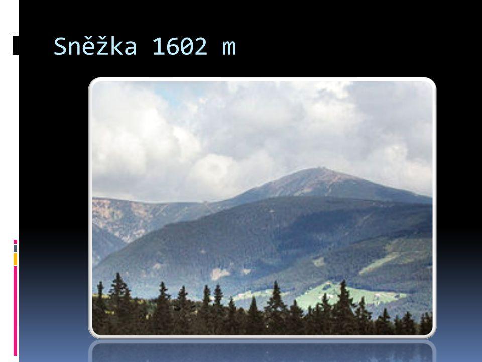 Sněžka 1602 m