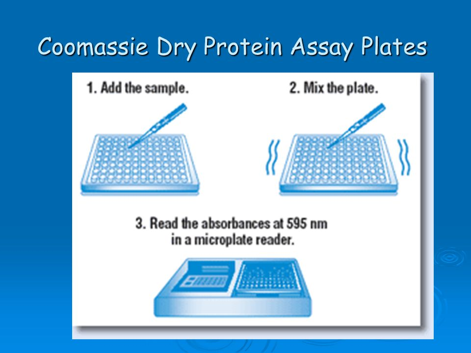Coomassie Dry Protein Assay Plates