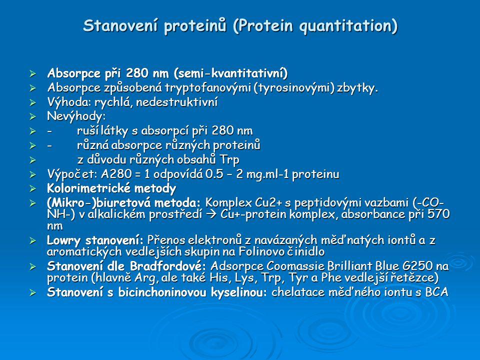 Stanovení proteinů (Protein quantitation)