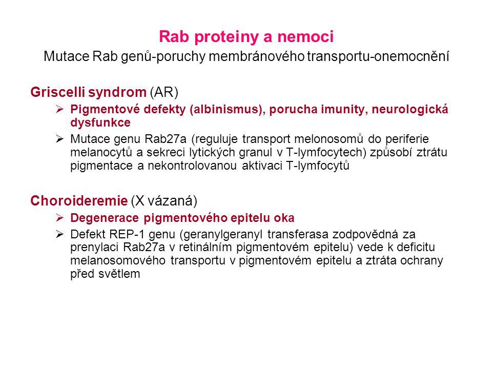 Mutace Rab genů-poruchy membránového transportu-onemocnění