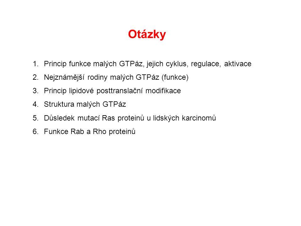 Otázky Princip funkce malých GTPáz, jejich cyklus, regulace, aktivace