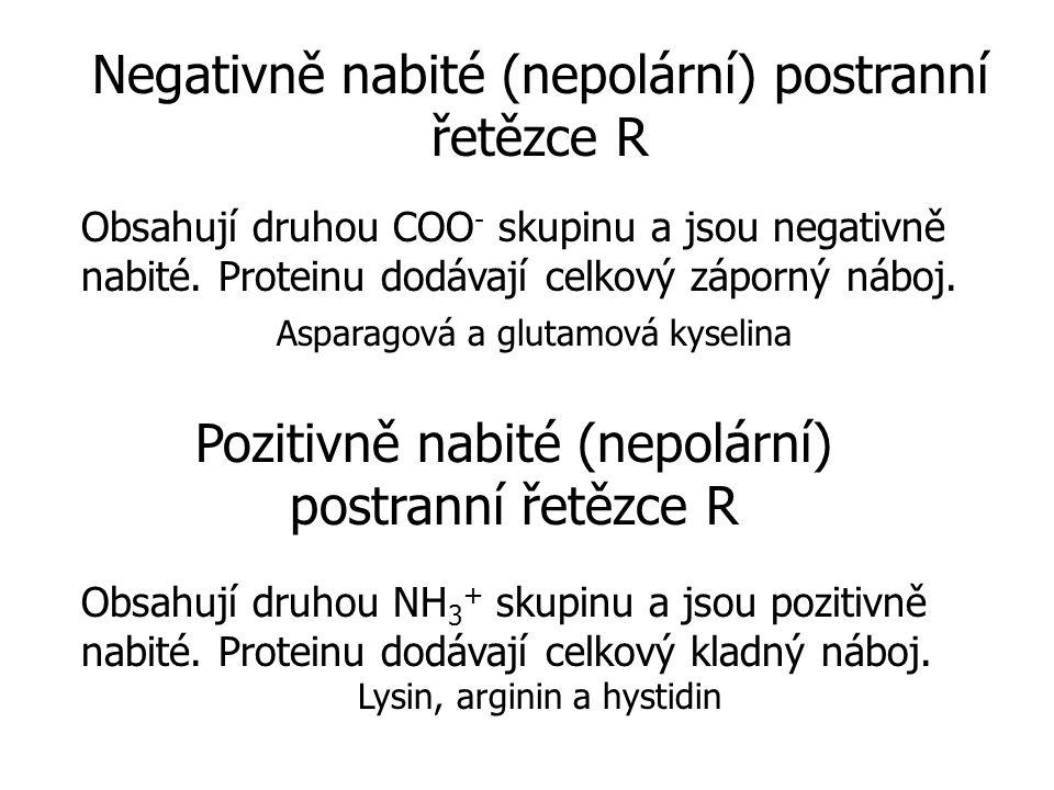 Negativně nabité (nepolární) postranní řetězce R