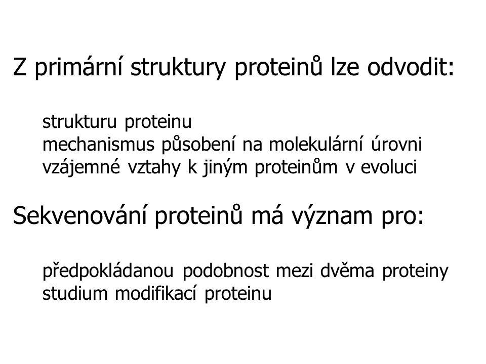 Z primární struktury proteinů lze odvodit: