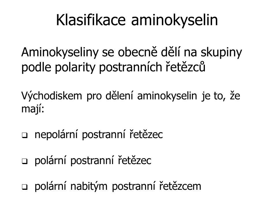 Klasifikace aminokyselin