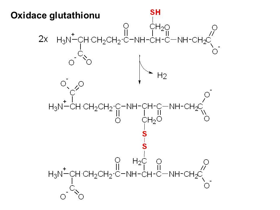 Oxidace glutathionu