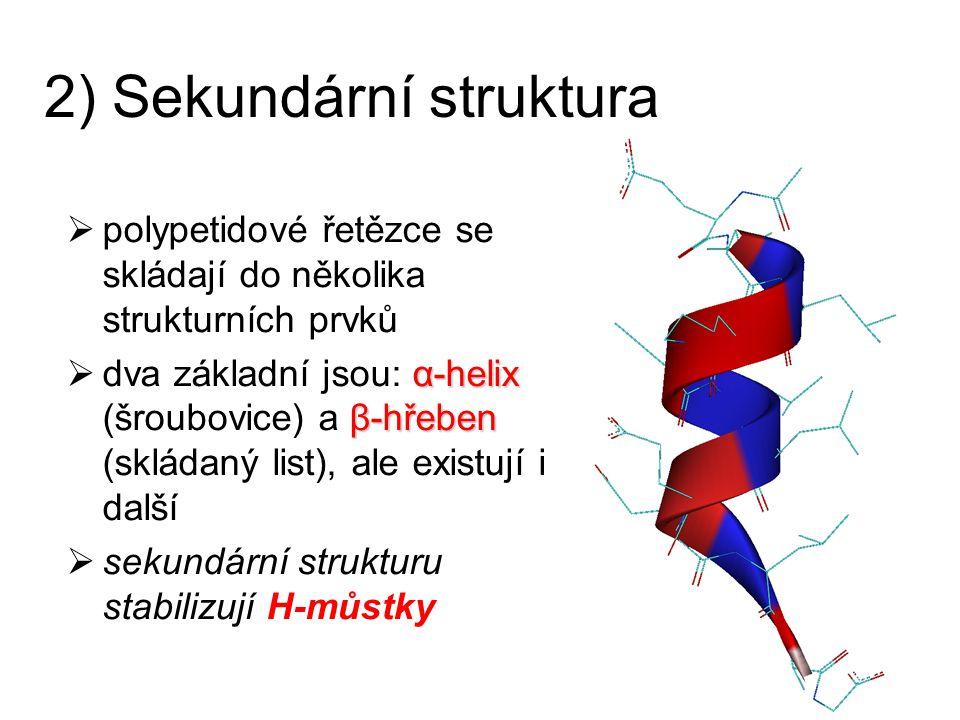2) Sekundární struktura