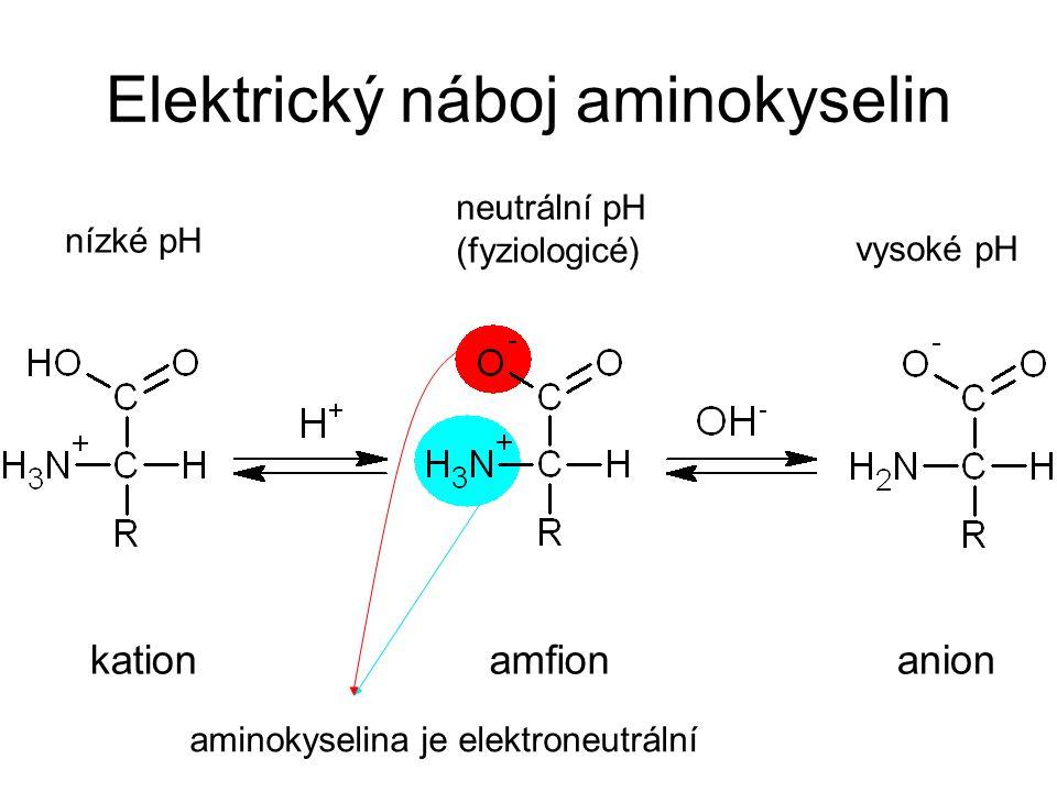 Elektrický náboj aminokyselin