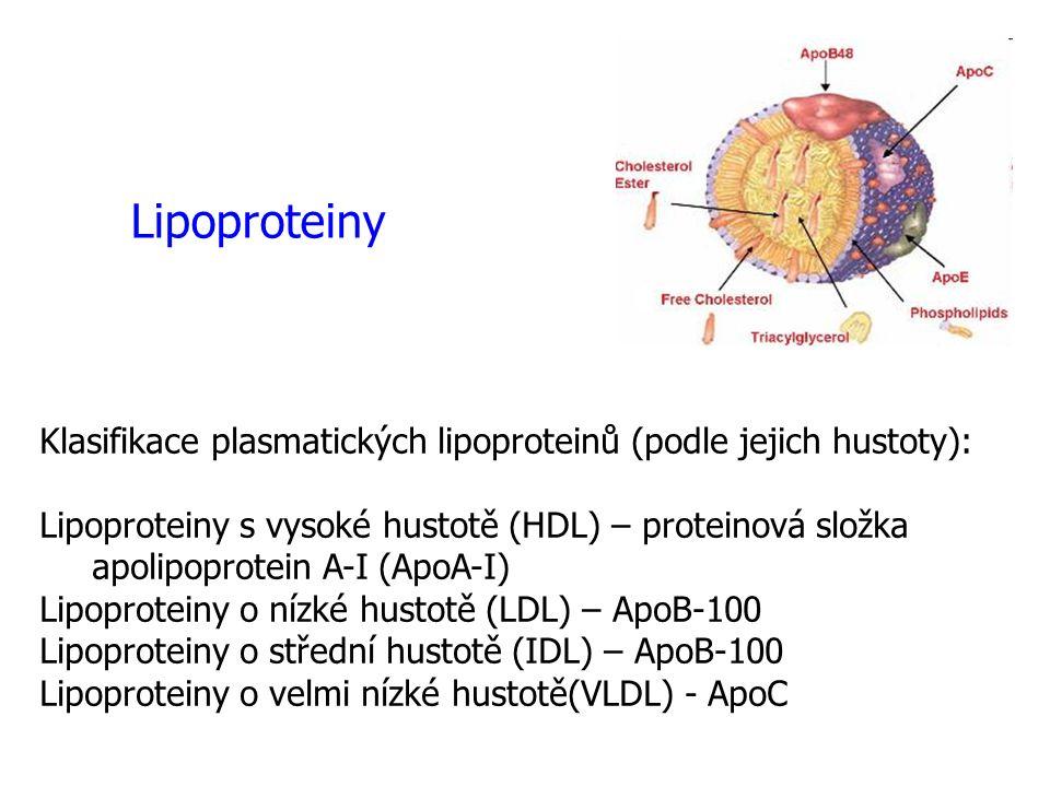 Lipoproteiny Klasifikace plasmatických lipoproteinů (podle jejich hustoty):