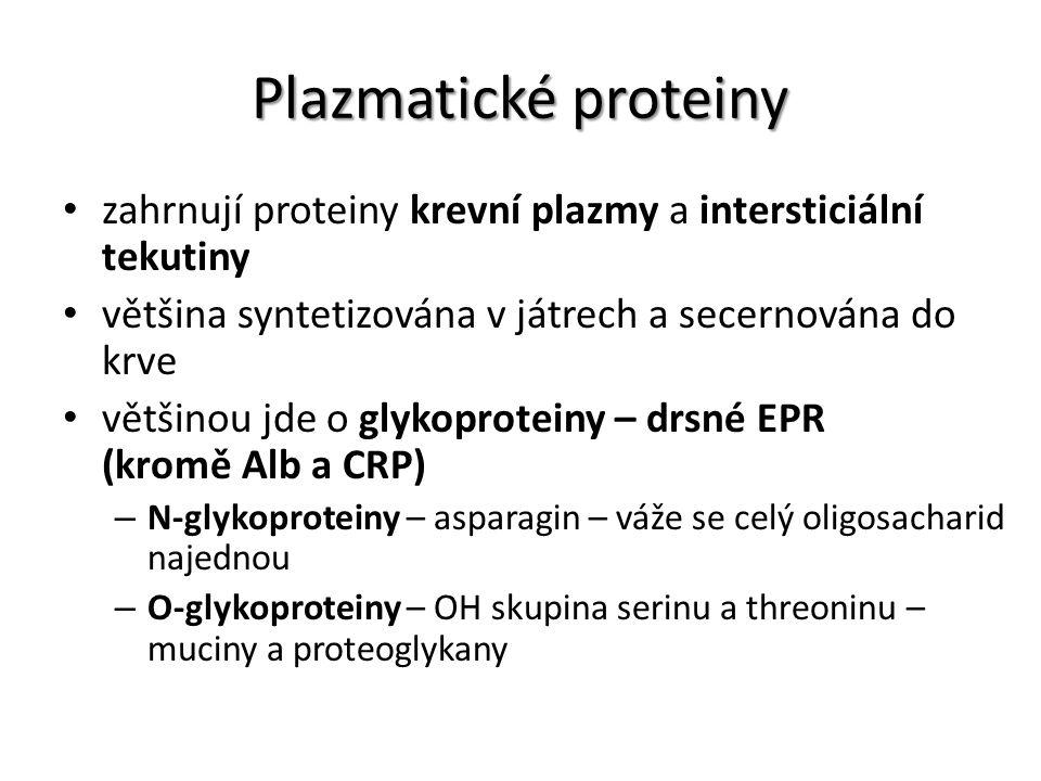 Plazmatické proteiny zahrnují proteiny krevní plazmy a intersticiální tekutiny. většina syntetizována v játrech a secernována do krve.