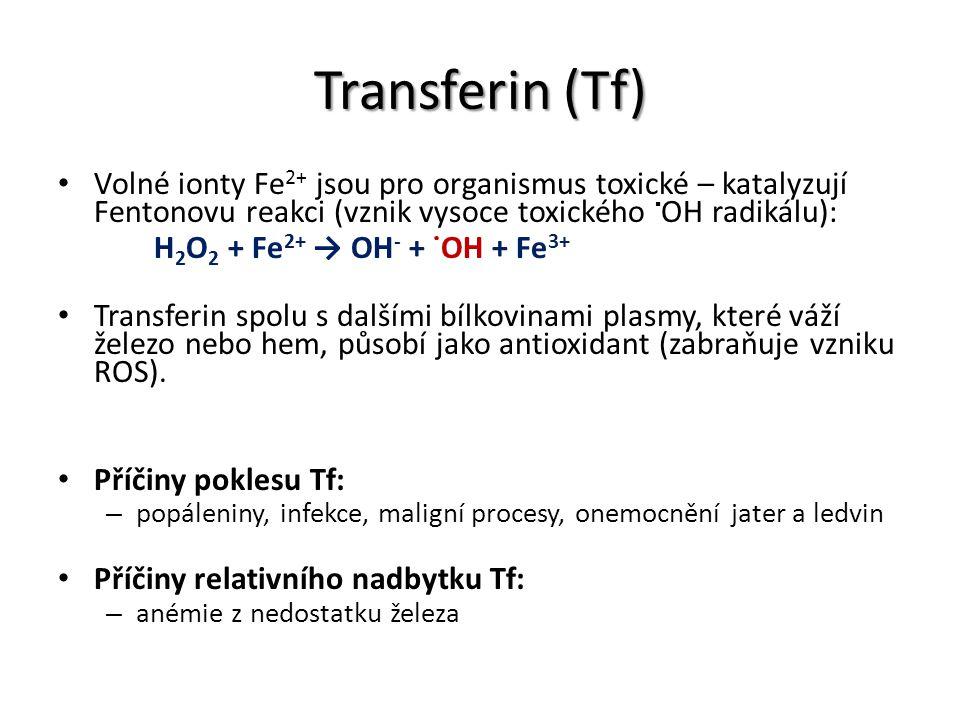 Transferin (Tf) Volné ionty Fe2+ jsou pro organismus toxické – katalyzují Fentonovu reakci (vznik vysoce toxického OH radikálu):