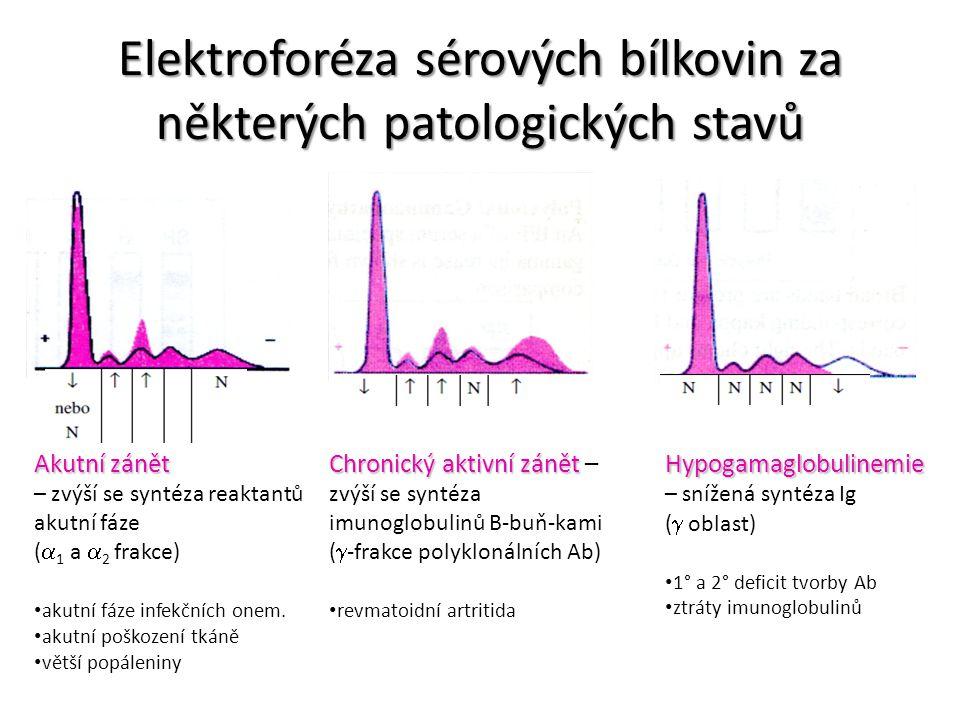 Elektroforéza sérových bílkovin za některých patologických stavů