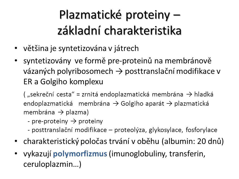 Plazmatické proteiny – základní charakteristika