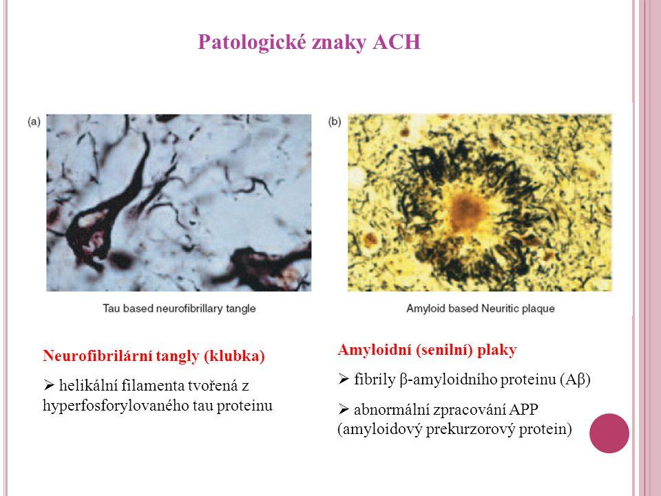 Patologické znaky ACH Amyloidní (senilní) plaky