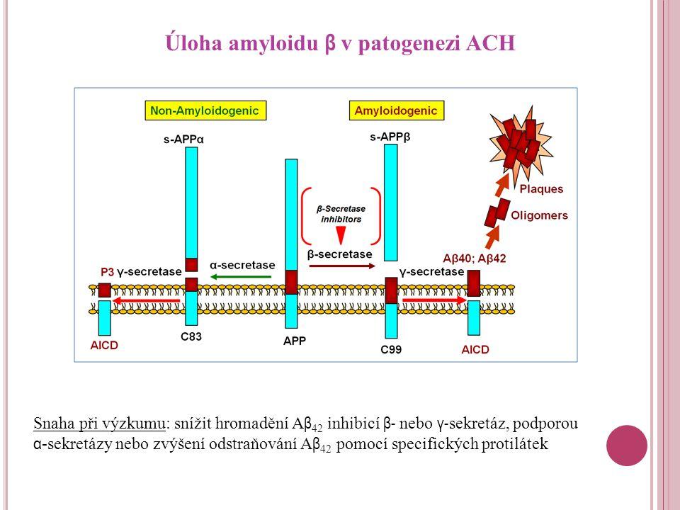 Úloha amyloidu β v patogenezi ACH