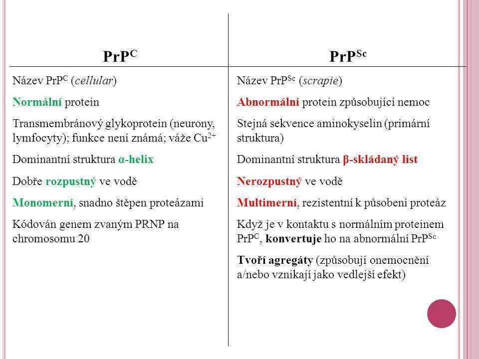 PrPC PrPSc Název PrPC (cellular) Normální protein