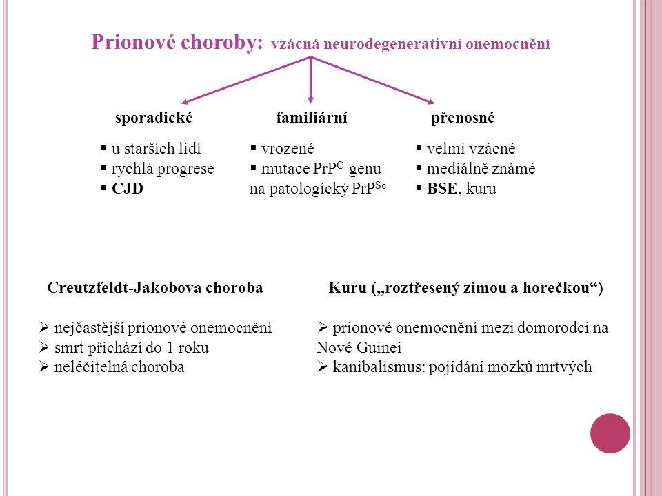 Prionové choroby: vzácná neurodegenerativní onemocnění
