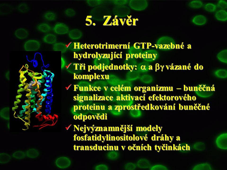 5. Závěr Heterotrimerní GTP-vazebné a hydrolyzující proteiny