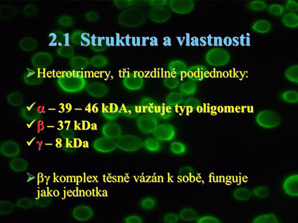 2.1 Struktura a vlastnosti