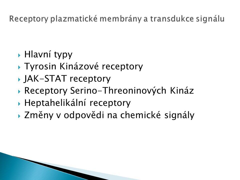 Receptory plazmatické membrány a transdukce signálu