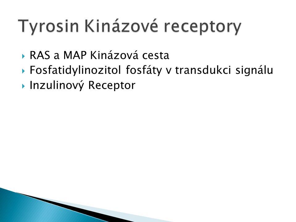Tyrosin Kinázové receptory