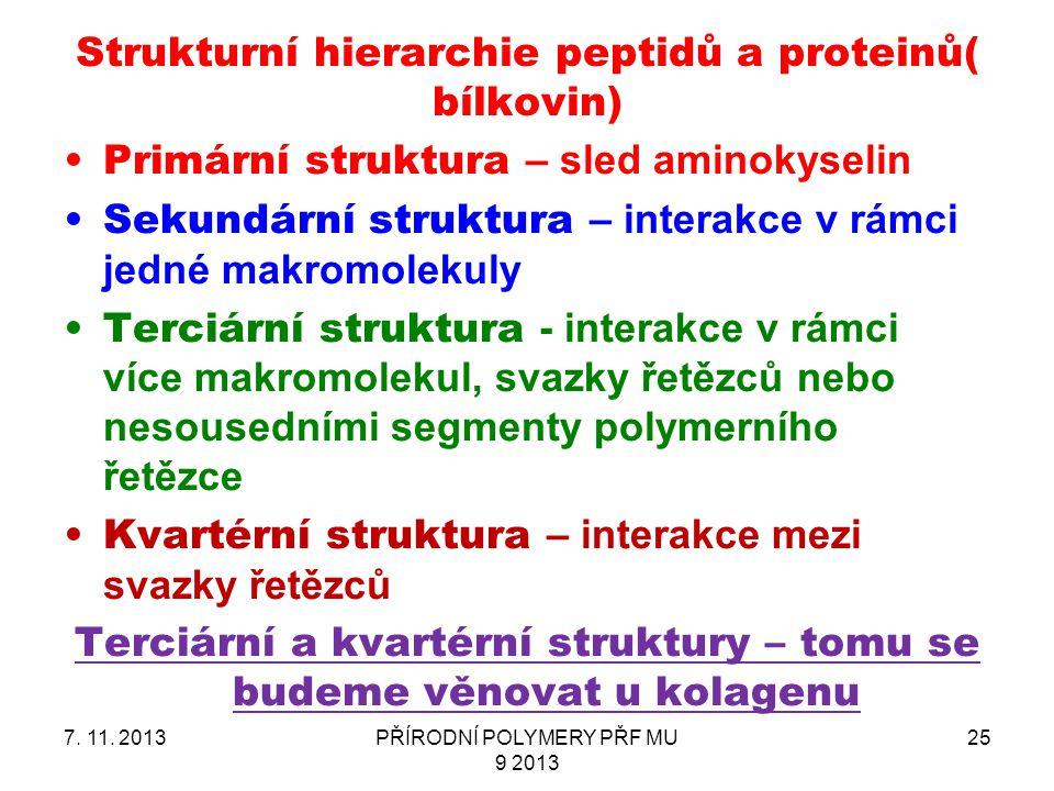 Strukturní hierarchie peptidů a proteinů( bílkovin)