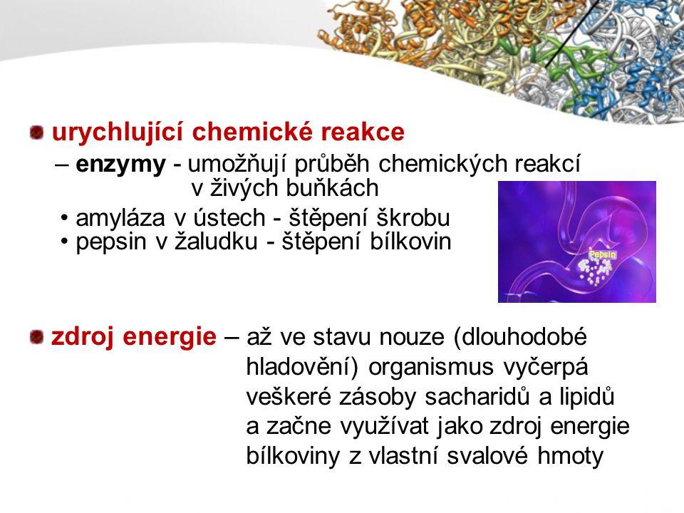 urychlující chemické reakce