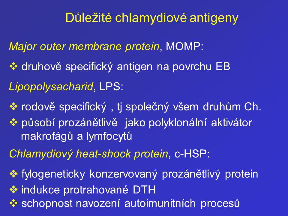 Důležité chlamydiové antigeny