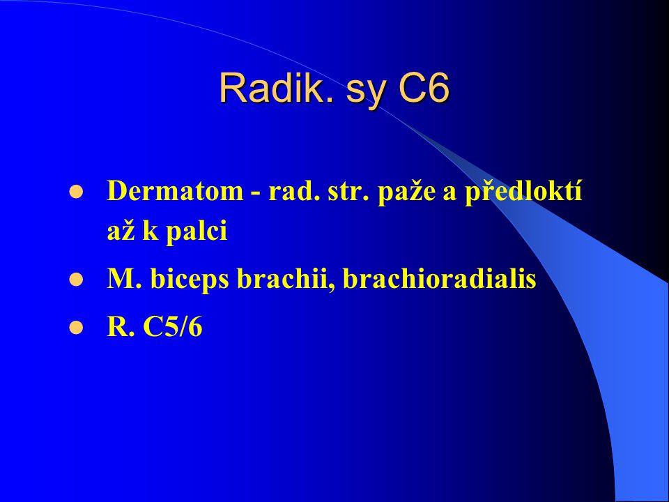 Radik. sy C6 Dermatom - rad. str. paže a předloktí až k palci