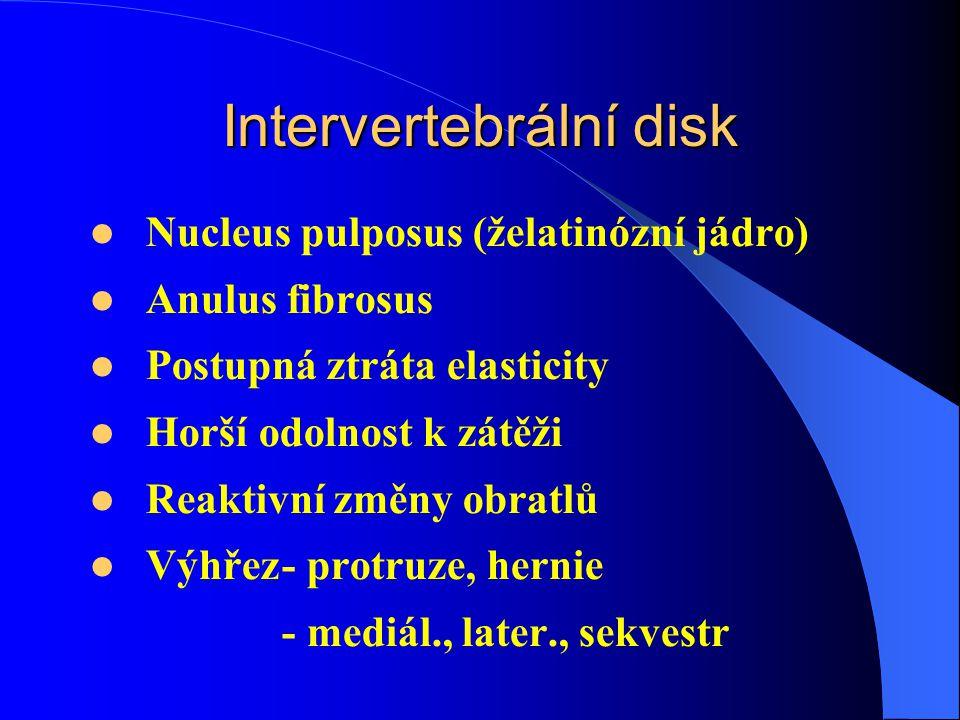 Intervertebrální disk