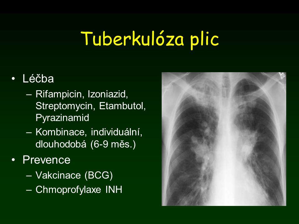 Tuberkulóza plic Léčba Prevence