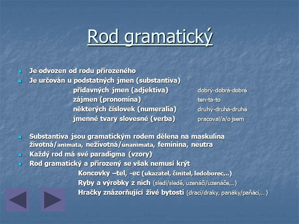 Rod gramatický Je odvozen od rodu přirozeného