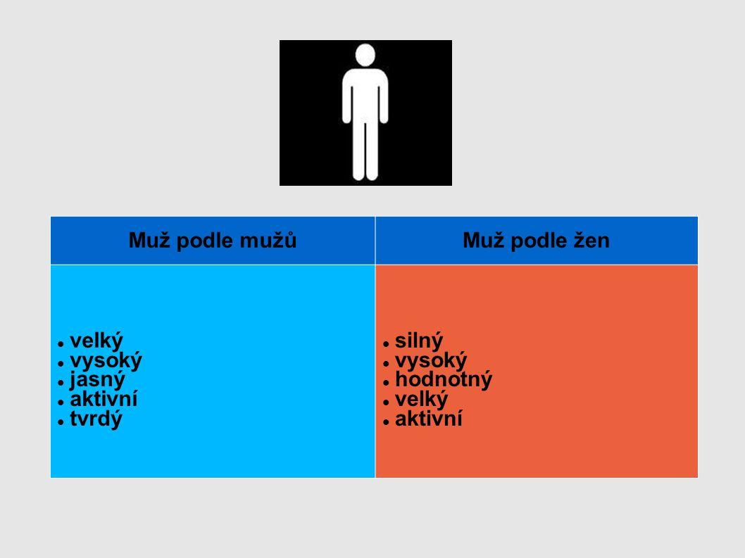 Muž podle mužů Muž podle žen velký vysoký jasný aktivní tvrdý silný hodnotný